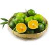 蜜桔青皮新鲜现摘现发桔子整箱3斤薄皮橘子无籽新鲜现摘 红色 3斤装 5斤中果