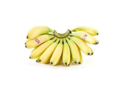 都乐Dole 菲律宾进口帝王蕉 1把装 单把重约600g 新鲜水果