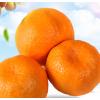芦柑椪柑橘子新鲜10斤应季水果桔子蜜桔丑橘非四川丑八怪沃柑孕妇