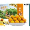广西融安滑皮金桔大果礼盒5斤装现摘新鲜纯甜水果脆蜜皮小金桔子