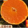 广西武鸣皇帝贡柑大果正宗应当季水果整箱5斤10现摘孕妇蜜桔橘子