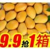新鲜树上熟芒果海南台农三亚小台农10/5/2斤装胜广西玉芒贵妃芒